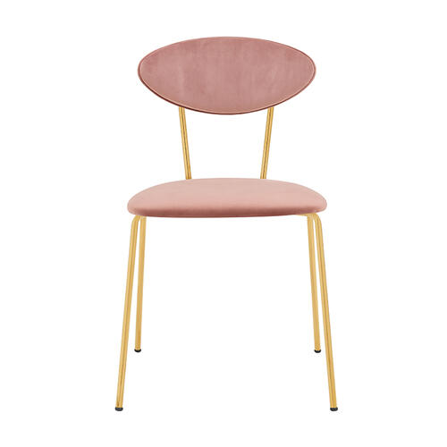 Neo Modern Pink Velvet and Gold Metal Leg Dining Room Chairs - Set of 2