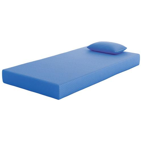 Twin Memory Foam Mattress and Pillow