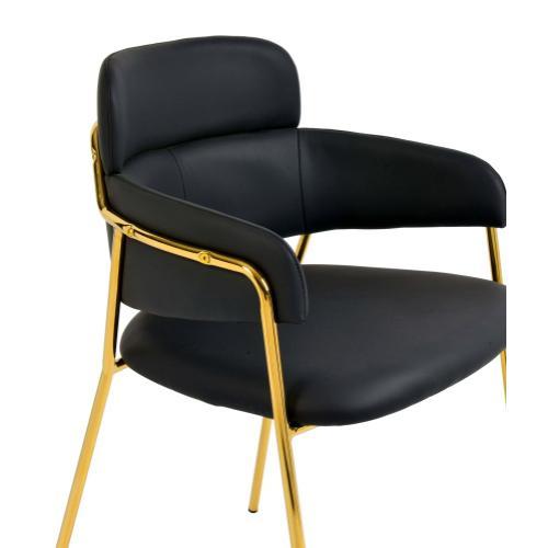Tov Furniture - Karl Black Vegan Leather Chair (Set of 2)