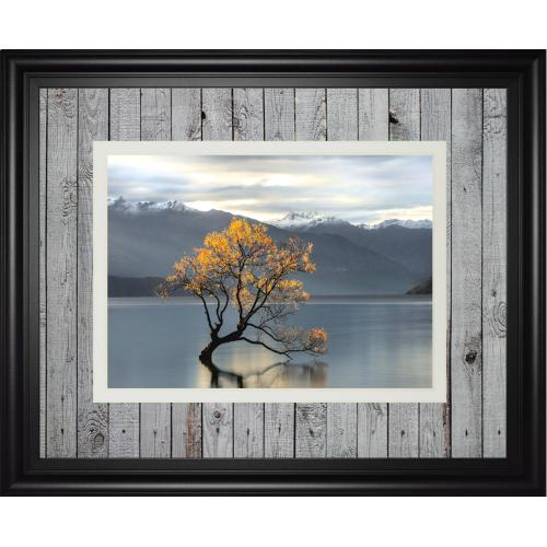"""""""Undisturbed"""" By Michael Cahill Framed Print Wall Art"""