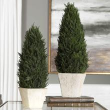 See Details - Cypress Cone Topiaries, S/2