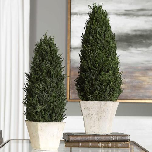 Uttermost - Cypress Cone Topiaries, S/2