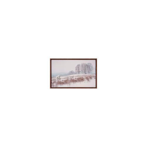 The Ashton Company - White Horse In Snow