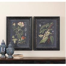Midnight Botanicals Framed Prints, S/2