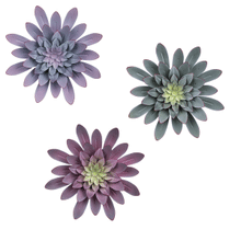See Details - Medium Layered Succulent Wall Decor (3 pc. ppk.)