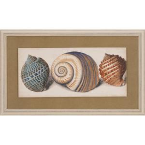Shell Trio I