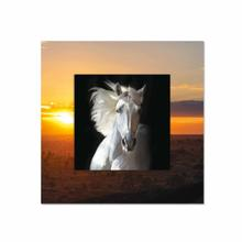 See Details - White Horse With Background Miniature Fine Wall Art