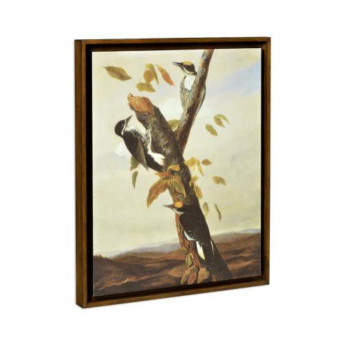 Black Backed Three Toed Woodpecker Painting on Medium Walnut Frame