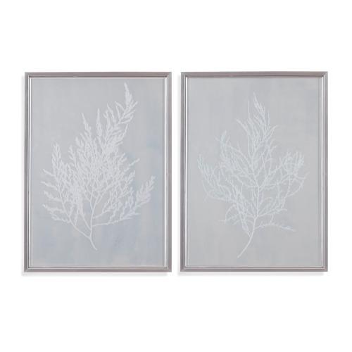 2 PC Silver Foil Algae