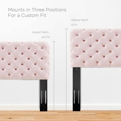 Modway - Lizzy Tufted Twin Performance Velvet Headboard in Pink