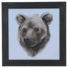 """ANIMAL STUDY (BEAR)"""
