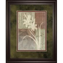 """""""Lily Silhouette"""" By Various Framed Print Wall Art"""