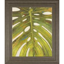 """""""Tropical Leaf Il"""" By Patricia Pinto Framed Print Wall Art"""