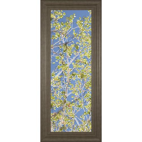"Classy Art - ""Spring Poplars I"" By Sharon Chandler Framed Print Wall Art"