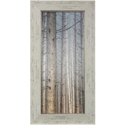 Style Craft - FOREST DREAMING I  31 X 59  Made in USA  Textured Framed Print