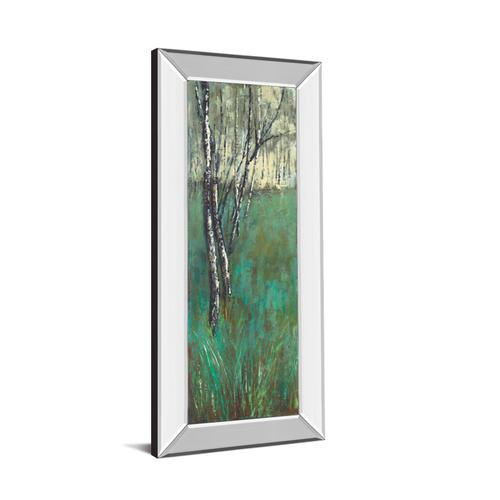 """""""Nature Companion I"""" By Solis Mirror Framed Print Wall Art"""