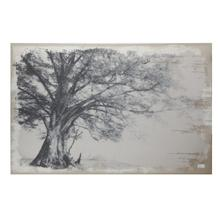 Arboreal Shelter Canvas Print