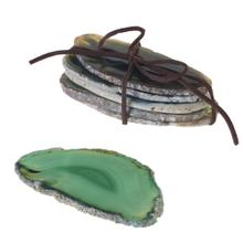"""~2""""-4""""L Green Agate Slices"""