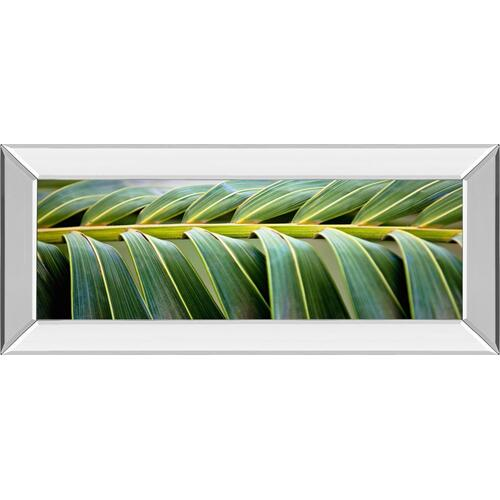 """Palma I"" By Susan Bryant Mirror Framed Print Wall Art"