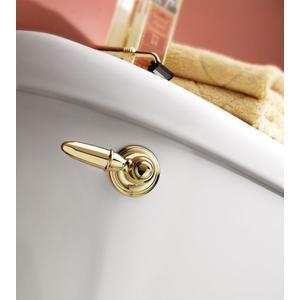 Kingsley polished brass tank lever