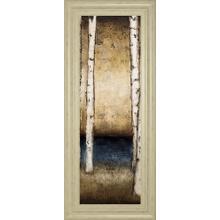 """""""Birch Landing II"""" By St Germain Framed Print Wall Art"""