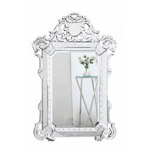Venetian 39.5 in. Transitional Mirror in Clear