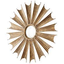 See Details - Optic Mirror