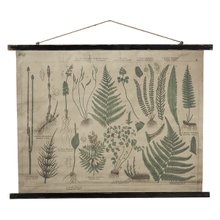 Product Image - Botanical Rolled Antique Canvas Wall Decor