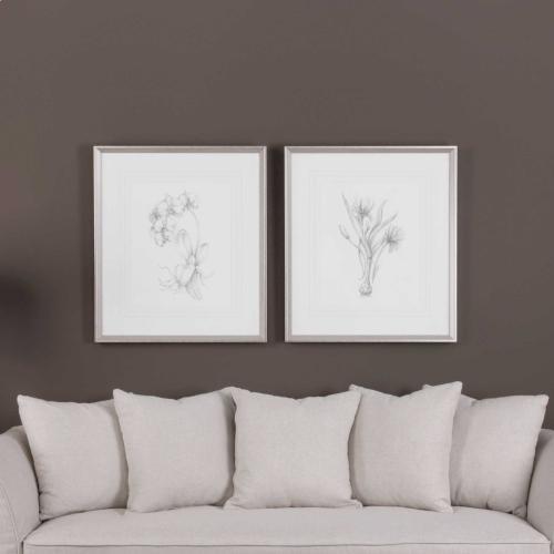 Botanical Sketches Framed Prints, S/2