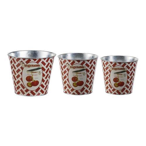 S/3 Abington Tomato Tins