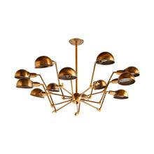 "Ursidae (20.5""x25.2"") Brass Metal Multi-Arm Twelve Light Chandelier"