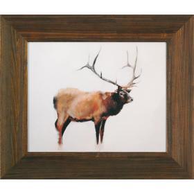 Elk 16x20