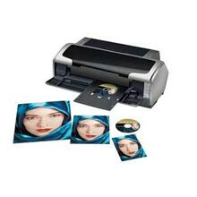 Epson Stylus Photo R1800 Ink Jet Printer