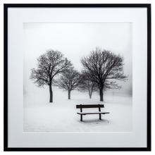 Winter's Morning Fog III