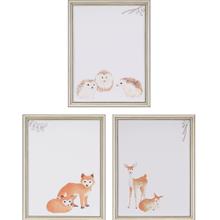 Animals II Pk/3