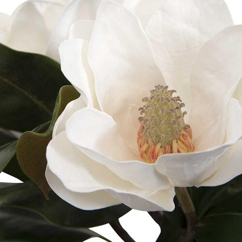 Uttermost - Middleton Magnolia Centerpiece