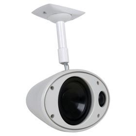 AIM MDU Single, Box Speaker