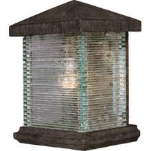 Triumph VX 1-Light Outdoor Wall Lantern