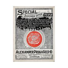Antique Seed Packet XIIII (40 x 55)