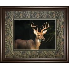 """White Tail Buck"" By Tony Campbell Double Matted Framed Print Wall Art"