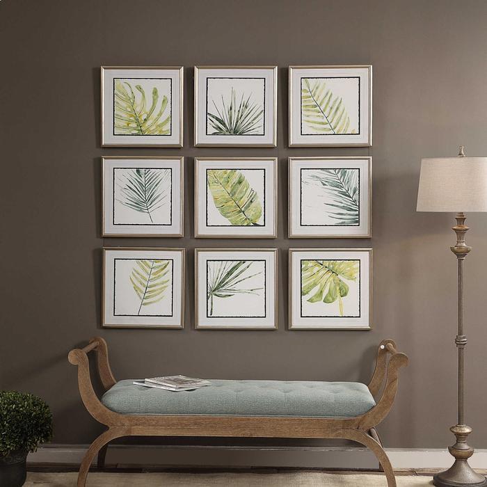 Uttermost - Verdant Impressions Framed Prints, S/9