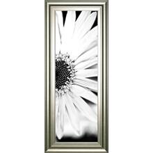 """""""White Bloom 2"""" By Susan Bryant Framed Print Wall Art"""