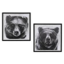 BEAR GRIN 1 & 2