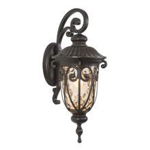Viviana Collection 1-Light Incandescent Exterior