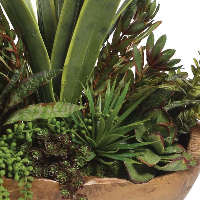 Uttermost - Salar Succulents