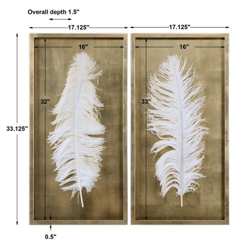 Uttermost - White Feathers Shadow Boxes, S/2