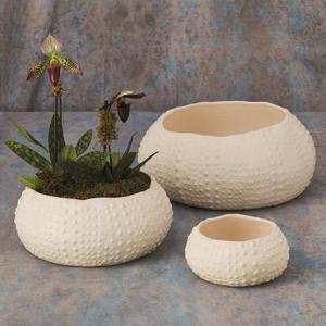 Ceramic Urchin Bowl-Matte White-Lg