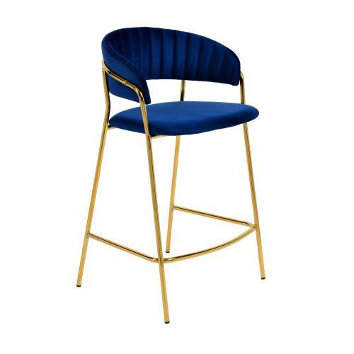 Tov Furniture - Padma Navy Velvet Counter Stool (Set of 2)