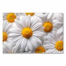 See Details - White Flowers Fine Wall Art On Tempered Glass Su 82030