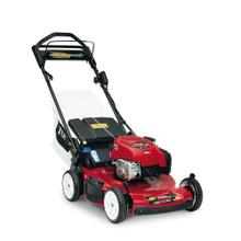 "Toro Recycler 22"" Self-Propelled Lawn Mower with Electric Start - Powered by a Briggs & Stratton 163cc EXi 725 Series Engine"
